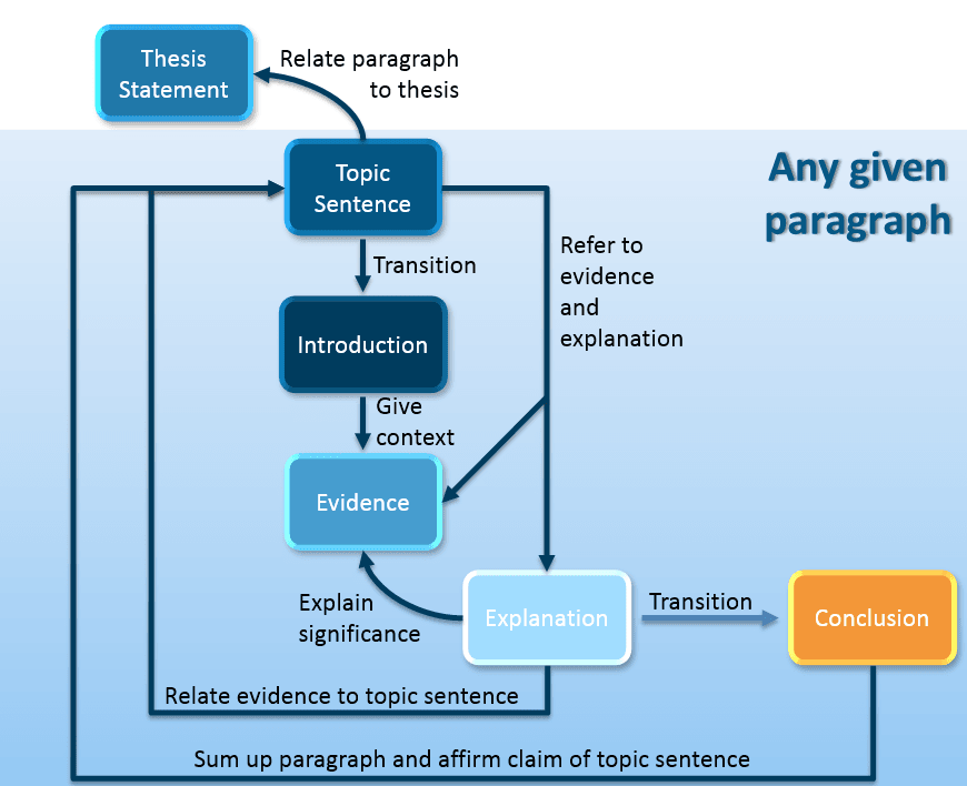 how to structure a paragraph in an academic essay diagram of paragraph structure